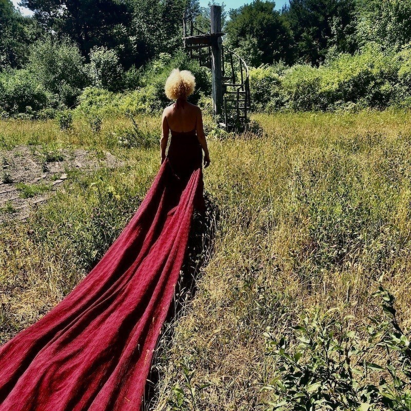 An image of a person with their back facing the camera. The person is standing in a green field. The have blonde frizzy hair and are wearing a long red gown that is draped across the grass.