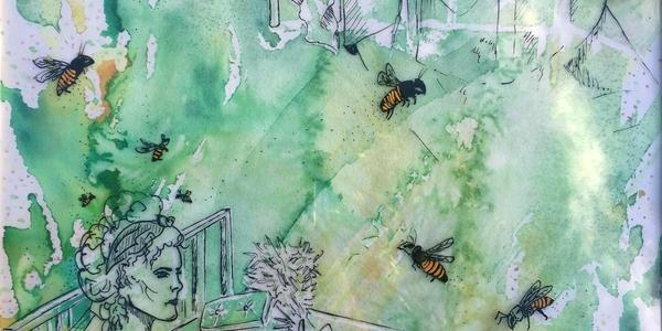Rectangle hive 1