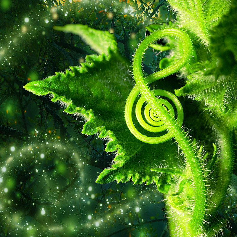 Plant Songs: Sound Bath in the Celestial Gardens - A whimsical graphic illustration of a green plant leaf and stem.