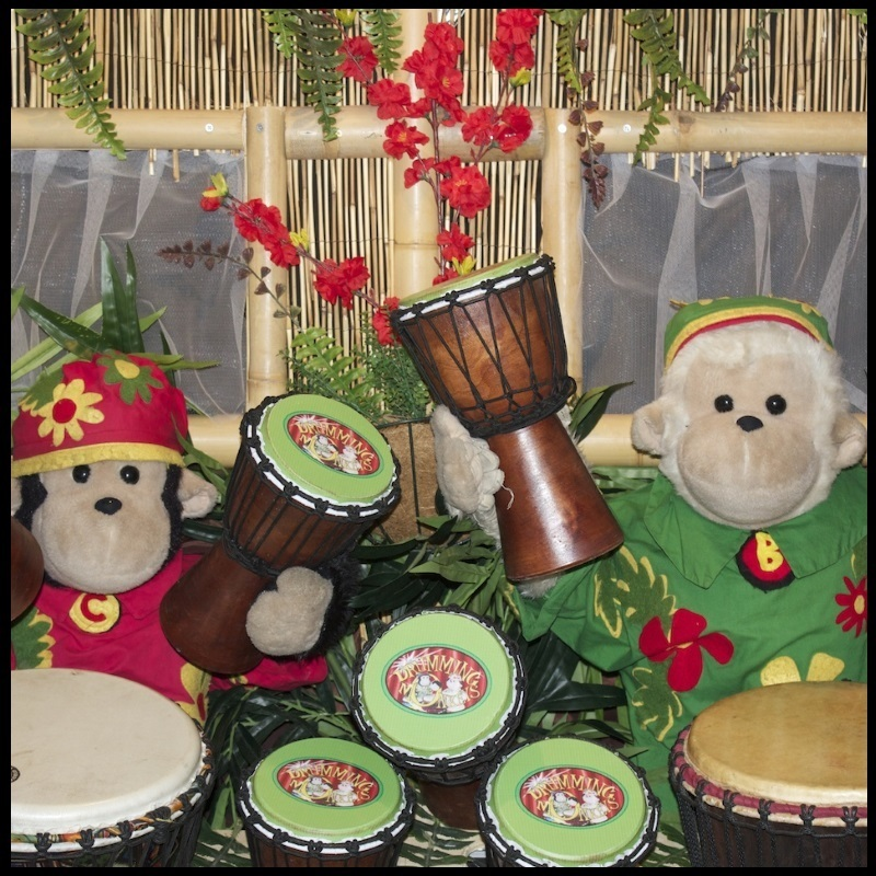 "Amazing Drumming Monkeys. The ""Ocean"" Show - Event image"