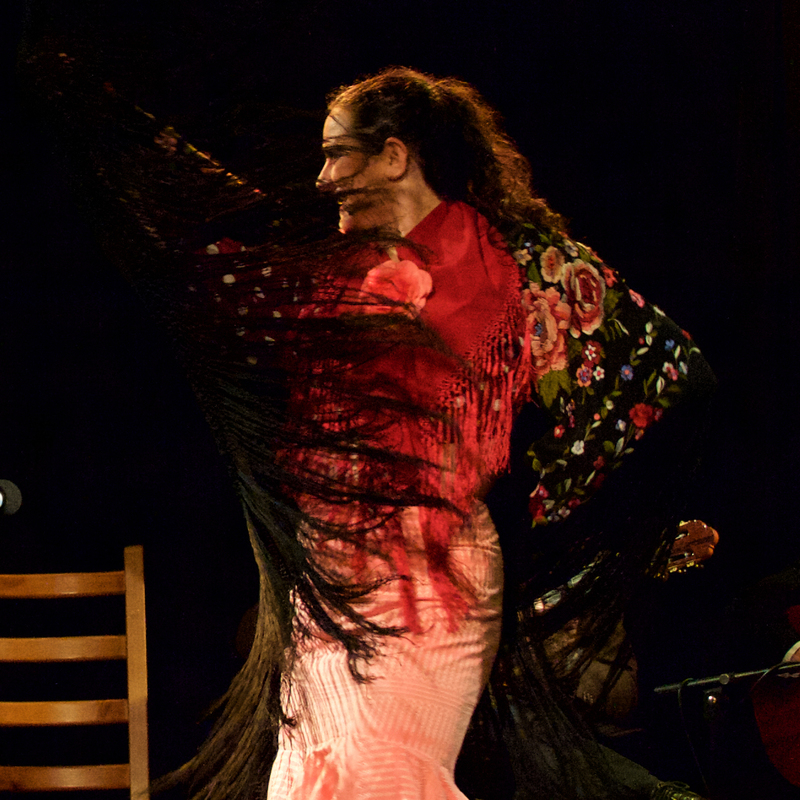 Scaled studio flamenco cabaret 2018 nexus 91