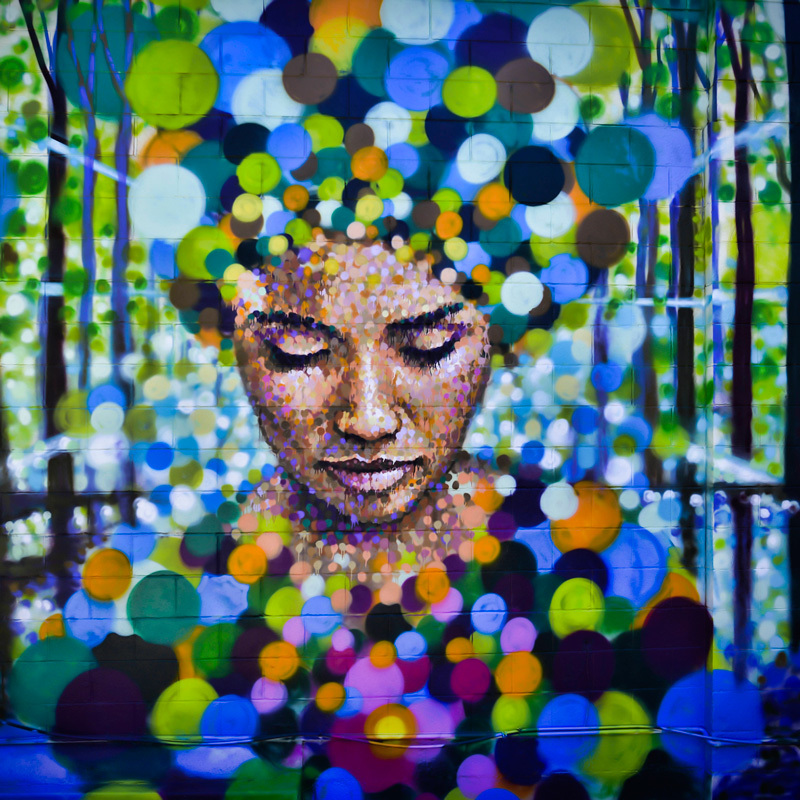 Scaled visual art  street art explosion jimmy c