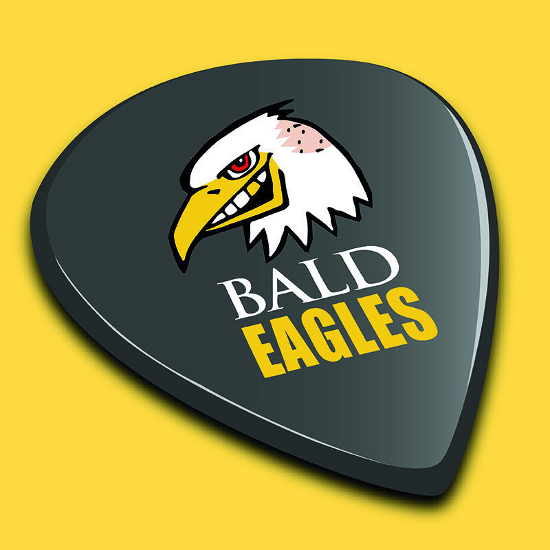An image of a black guitar pick that has an illustration of an eagle with a yellow beak and the text 'Bald Eagles' in white and yellow capitalised font. The background of the image is yellow.