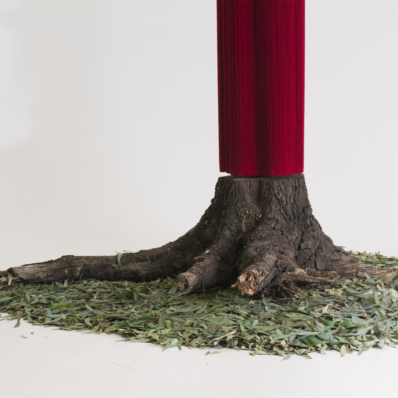 FELTspace Graduate Award Exhibition - Kate Oakenfold - A tree stump sits on top of a pile of gum leaves. A red column extends from the top of the stump . The background is white.