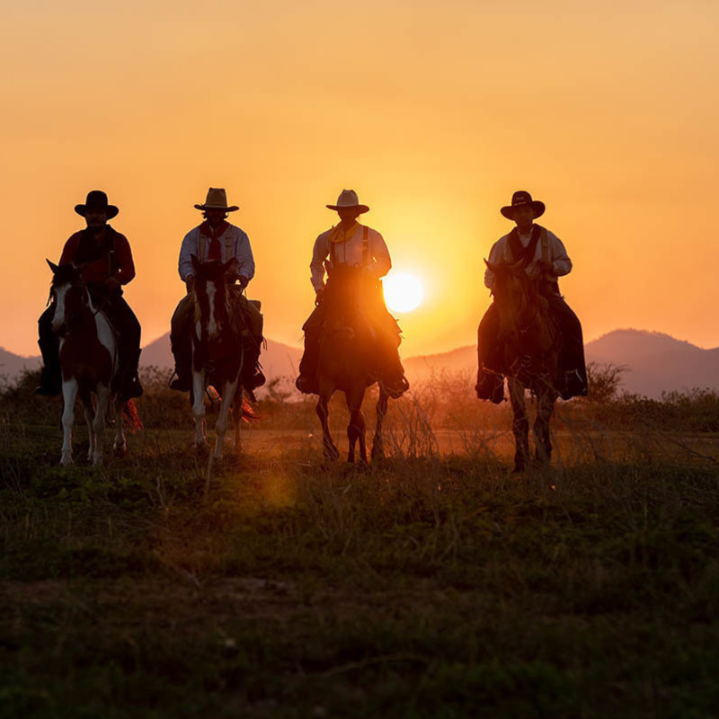 The outline of four people on horses with the sunset and mountains behind them. The sunset is very bright orange.