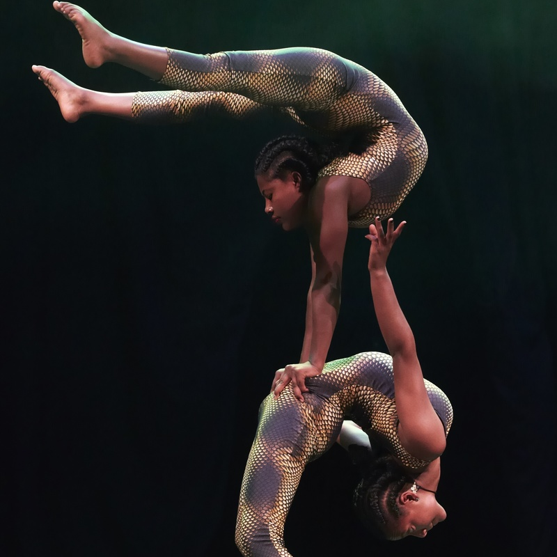 Scaled circus abyssinia   contortion1  photo credit   andy phillipson