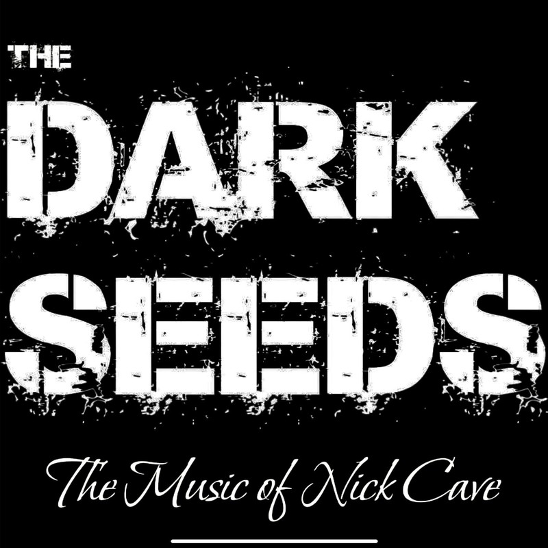 The Dark Seeds - the music of Nick Cave - A logo image that reads, 'The Dark Seeds' and 'The Music of Nick Cave' in white font upon a black background.