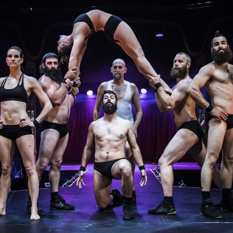 Scaled cirque alfonse in barbu at the spiegeltent credit david jensen 2