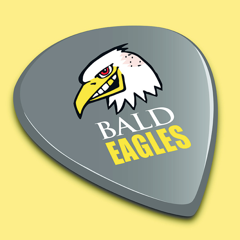 Scaled baldies logo 800x800