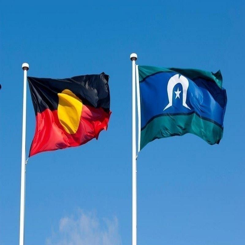 Scaled atsi flags