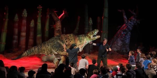 Rectangle erths dinosaur zoo101