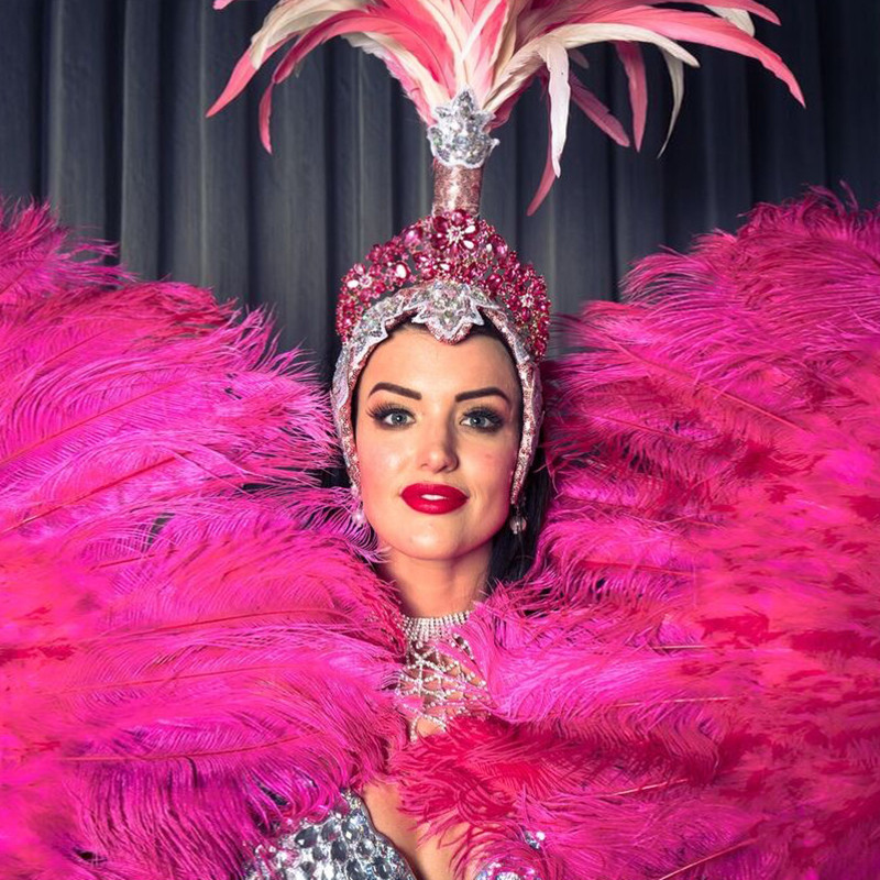 A person with a blank expression staring straight ahead. They are wearing a pink and silver embellished headpiece that has pink feathers coming out of the top. They are holding two large pink feathered hand fans on either side of their face.