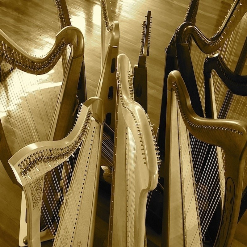 A Celtic Adventure - An photograph taken from the side of several light wooden harps in a row.